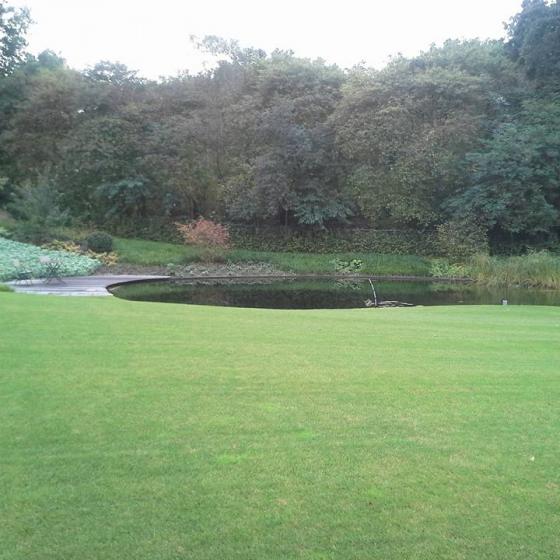 Landelijke tuin met Vijver Diever