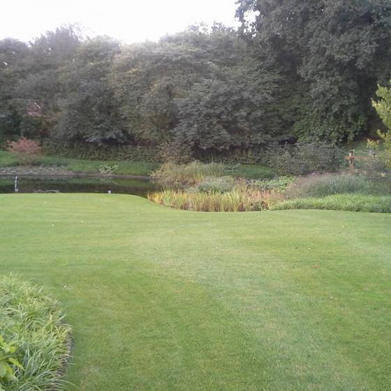 Prachtige tuin met vijver Diever