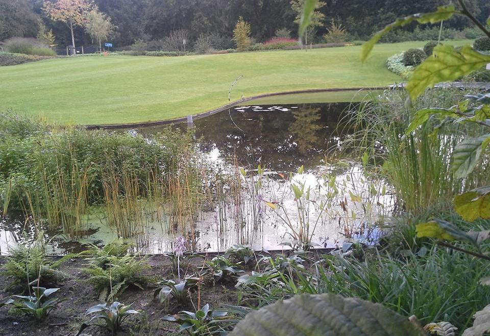Prachtige tuin met Zwemvijver Diever