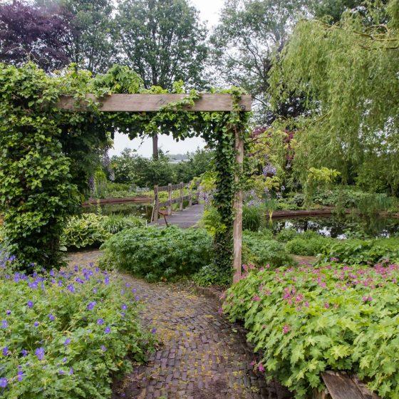 prachtige tuin met vijver