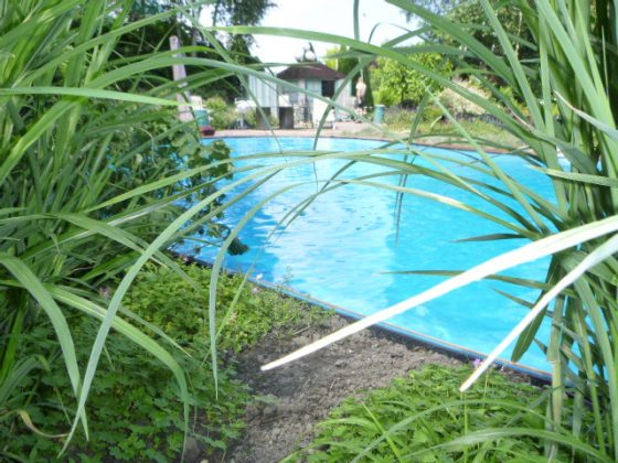 Zwembad met helder water
