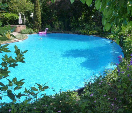 Mooi Zwembad in Zwaag