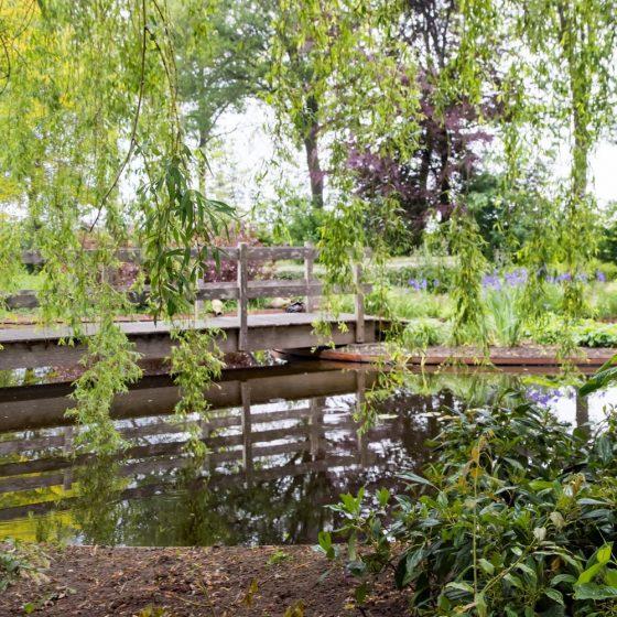 loopbrug weerspiegeling vijver