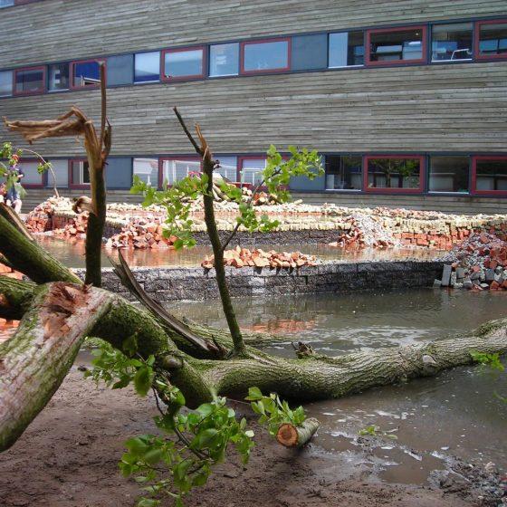 natuurlijk vijver door leerlingen OACTerra Leeuwarden